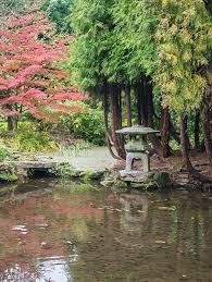 Japanese pond Newstead Abbey